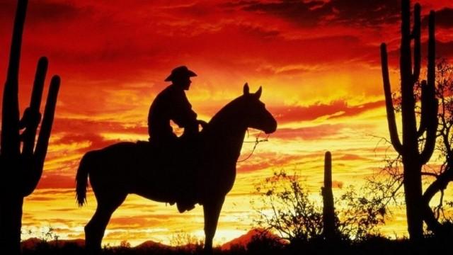 Американский «Дикий Запад», или наш Wild Wild West